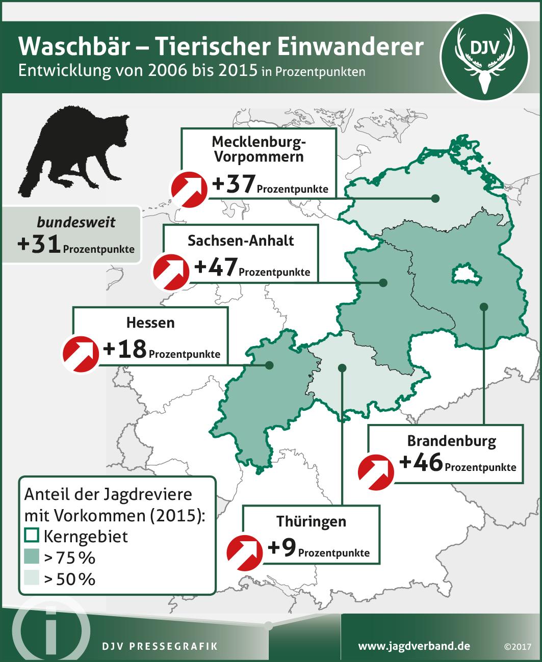 Waschbär: Verbreitung 2006-2015