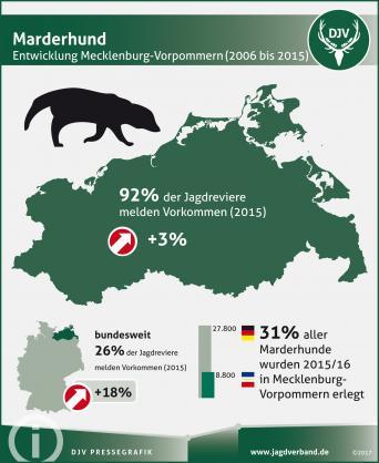 Marderhund: Entwicklung in Mecklenburg-Vorpommern 2006-2015