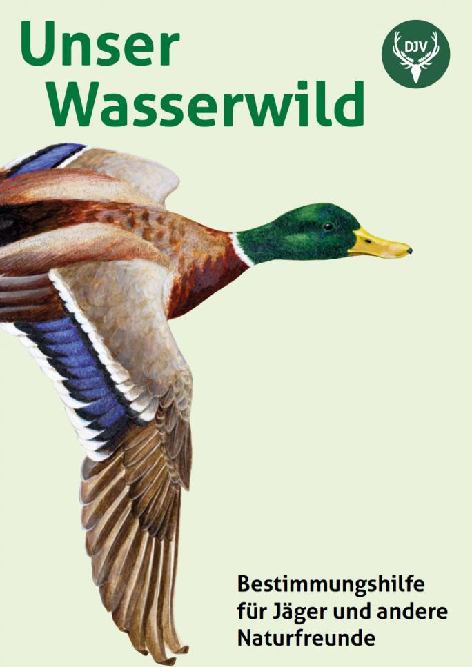 http://www.jagdverband.de/sites/default/files/resize/Wasserwild-Titel_2015-684x967.jpg