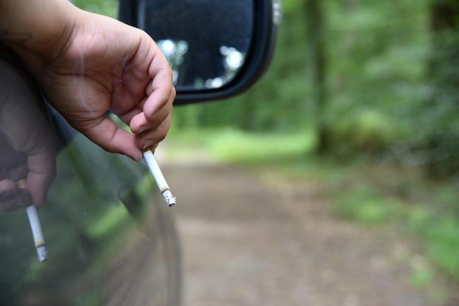 Das Waldbrandrisiko durch Zigaretten ist besonders hoch.