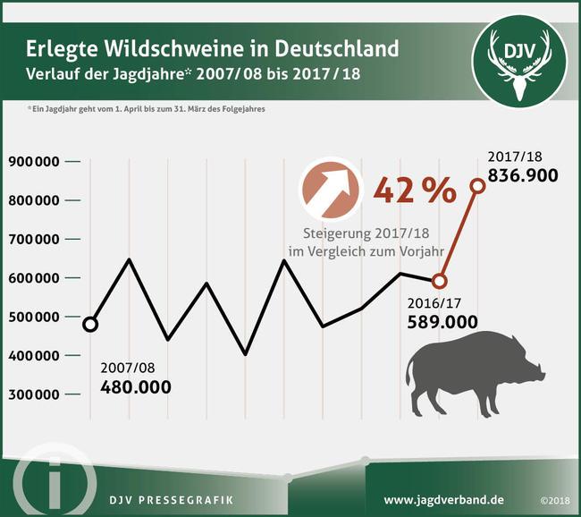 Rekordhoch im Jagdjahr 2017/2018: Noch nie haben Jäger so viele Wildschweine erlegt