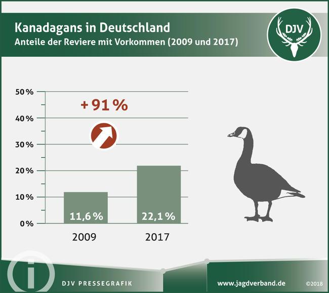 Kanadagans in Deutschland - Anteil der Reviere mit Vorkommen (2009 und 2017)