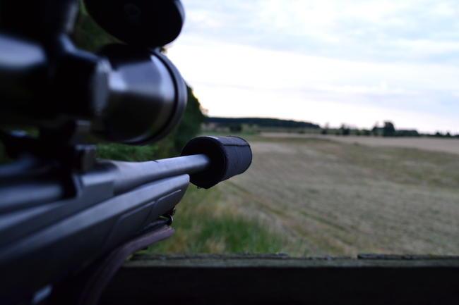 Gemeinsam mit dem FWR hat der DJV ein Frage-Antwort-Papier zur Novelle des Waffengesetzes veröffentlicht.