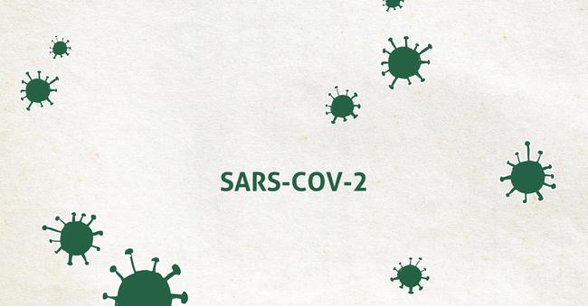 Inzwischen sind in allen Bundesländern Infektionsfälle mit dem neuen Coronavirus (SARS-CoV-2) bestätigt worden.
