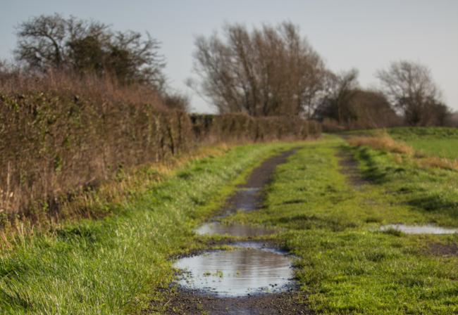Der REACH-Ausschuss hat die Verordnung zur Beschränkung von Bleischrot in und über Feuchtgebieten mit einer Übergangszeit von zwei Jahren beschlossen.