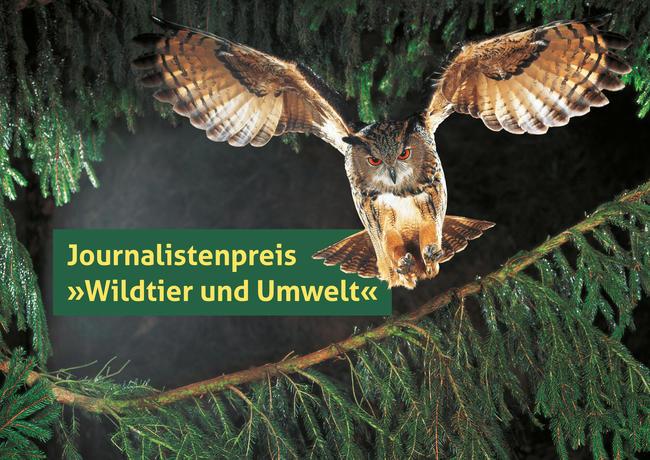 """Der DJV vergibt den Journalistenpreis """"Wildtier und Umwelt"""" in den Kategorien Print, Hörfunk, Fernsehen und Online."""