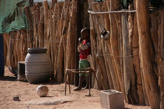 Die Bevölkerung Botswanas leidet unter ausufernden Konflikten mit Wildtieren. Durch Elefanten sind seit 2017 über zwei Dutzend Menschen zu Tode gekommen.