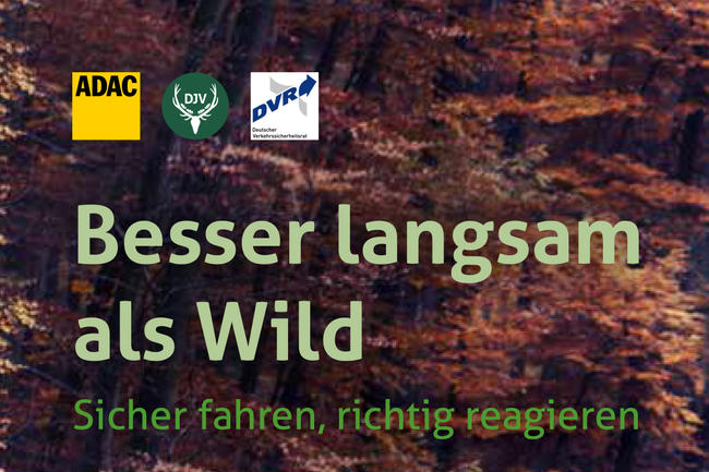 Die Wildunfallbroschüre von ADAC und DJV.