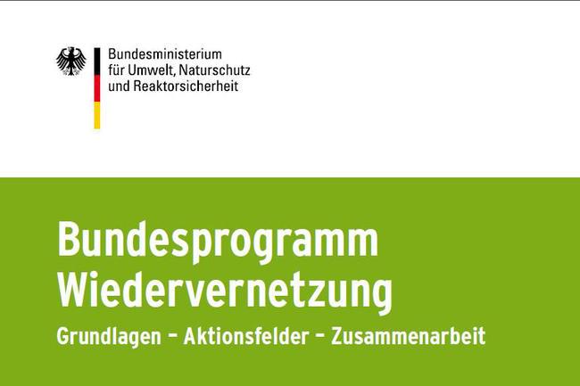 Broschüre Bundesprogramm Wiedervernetzung
