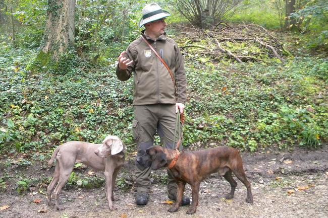 Jens Hepper mit seinen beiden Hunden