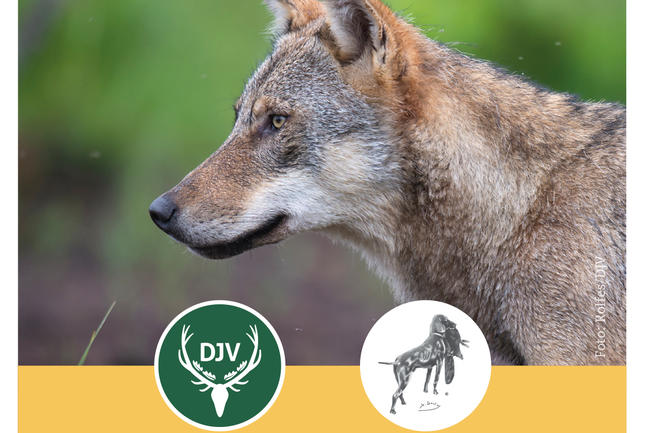 Faltblatt: Hundearbeit im Wolfsgebiet