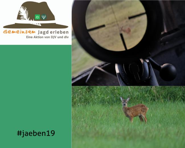 #jaeben19