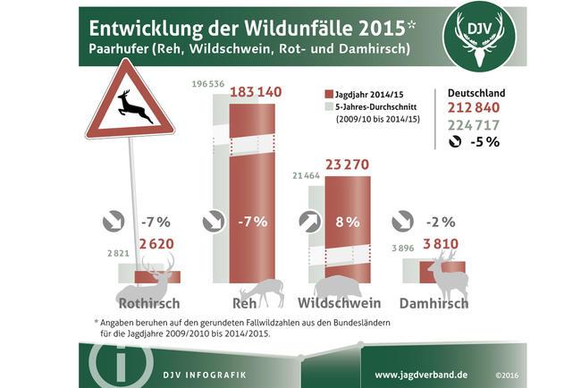 Entwicklung der Wildunfälle 2015
