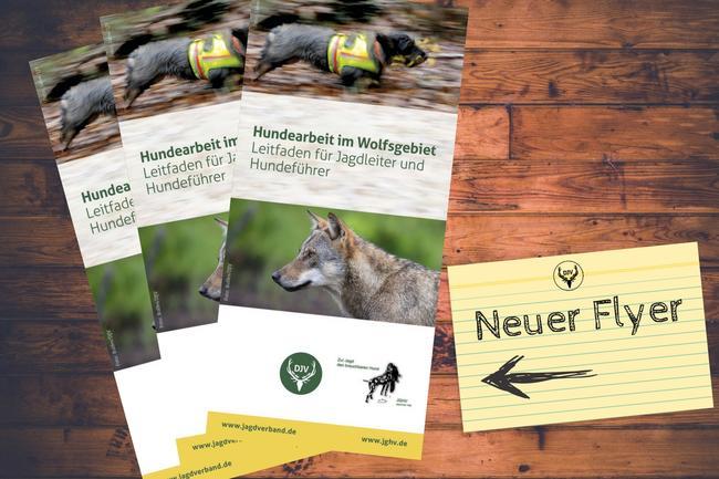 Der Flyer gibt Hinweise zu Planung und Durchführung einer Jagd  im Wolfsgebiet.