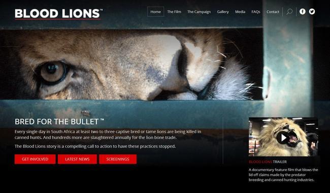 Der Abschuss von gezüchteten und in Gefangenschaft aufgewachsenen Wildtieren hat mit Jagd nichts gemein.