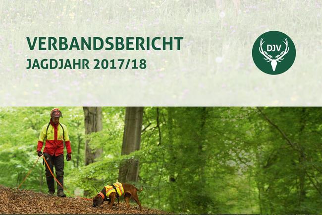 Der Verbandsbericht 2017/18 ist ab sofort digital oder als Printausgabe erhältlich.