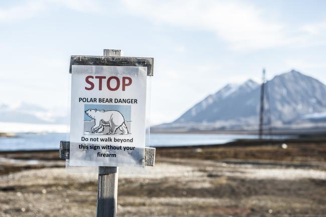 Die Jagd auf Eisbären basiert laut Weltnaturschutzunion IUCN auf Quoten, die jährlich unter Einbeziehung bester wissenschaftlicher und traditioneller ökologischer Maßstäbe gemeinsam mit den Inuit vor Ort festgelegt werden.