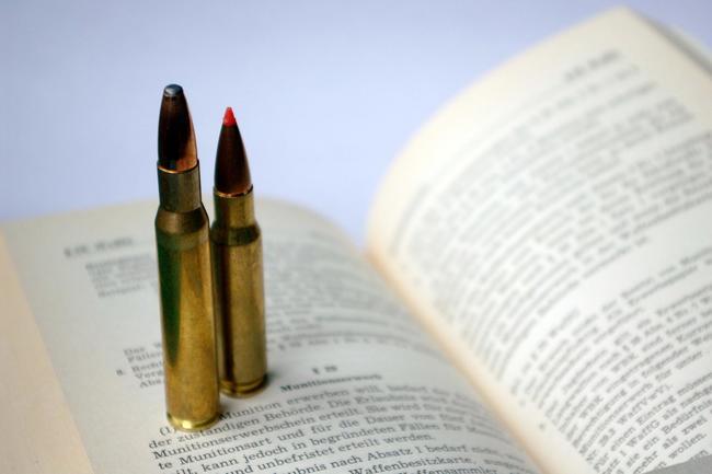Das Waffengesetz war Thema in Bundestag und Bundesrat.