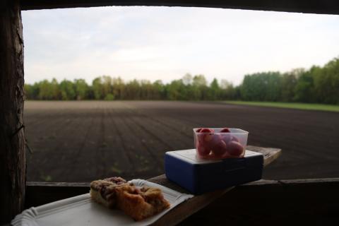 Brotzeit mit Radieschen und Kuchen bei fantastischer Aussicht. Gibt es Besseres als das? Nicht wirklich. (Quelle: Anna Martinsohn)