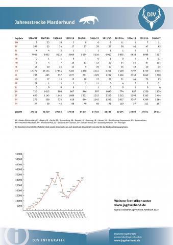 Marderhund: Jagdstatistik 2006-2017