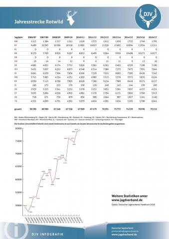 Rotwild: Jagdstatistik 2006-2017