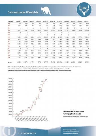 Waschbär: Jagdstatistik 2006-2017