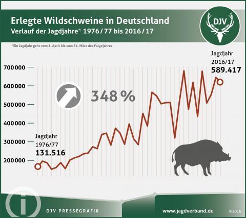 Wildschwein Jagdstatistik 1976/77 bis 2016/17