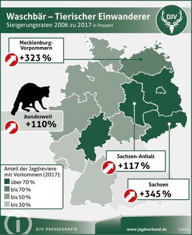Waschbärverbreitung: Steigerungsrate 2006 zu 2017