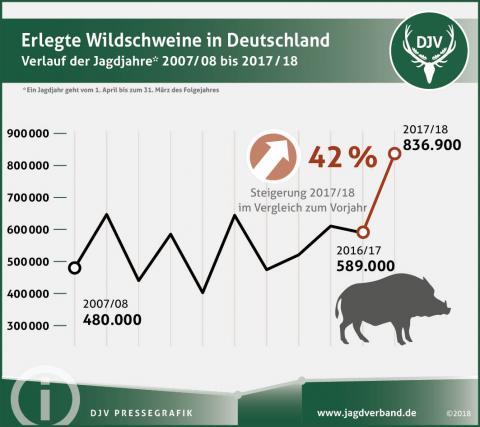 Rekordhoch im Jagdjahr 2017/2018: Noch nie haben Jäger so viele Wildschweine erlegt (Quelle: DJV)