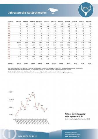 Waldschnepfe: Jagdstatistik 2007-2018