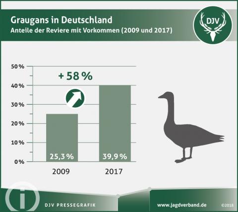 Graugans in Deutschland - Anteil der Reviere mit Vorkommen (2009 und 2017)