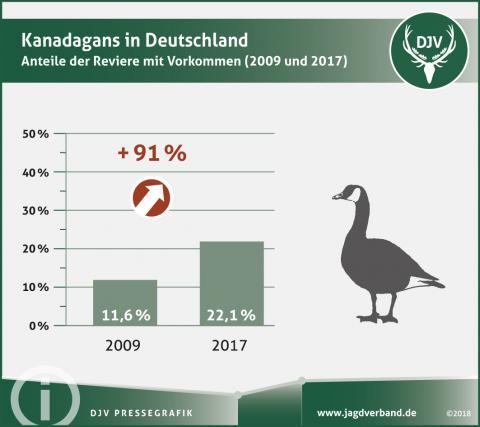 Kanadagans in Deutschland - Anteil der Reviere mit Vorkommen (2009 und 2017) (Quelle: DJV)