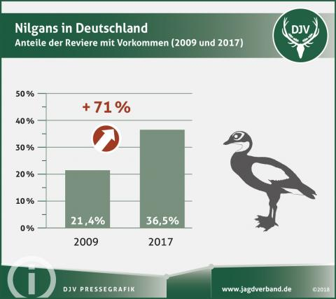 Nilgans in Deutschland - Anteil der Reviere mit Vorkommen (2009 und 2017)