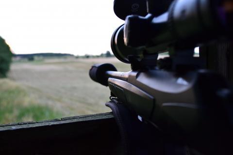 Bundesrat stimmt umstrittener Änderung des Waffengesetzes zu. Mehr Bürokratie und kaum ein Zugewinn für die öffentliche Sicherheit. (Quelle: Hamann/DJV)