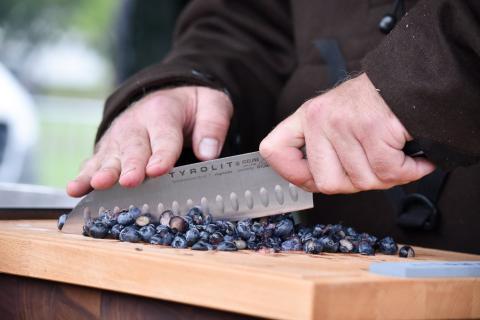 Blaubeeren verleihen dem Gericht eine fruchtige Note. (Quelle: Milinski/DJV)