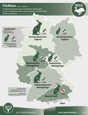 Feldhase - Frühjahrspopulationen und Nettozuwachsraten in den Großlandschaften Deutschlands im Jahr 2019