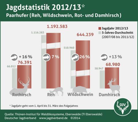 Jagdstatistik 2012/13 Paarhufer (Quelle: DJV)