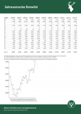 Rotwild: Jagdstatistik 2012/13