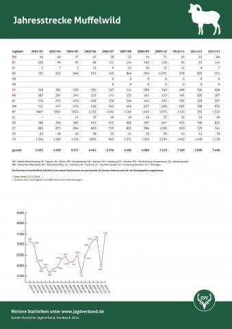 Muffelwild: Jagdstatistik 2012/13