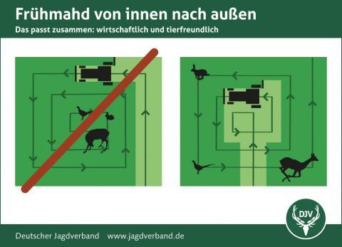 Von innen nach außen mähen rettet Wildtierleben (Quelle: DJV)