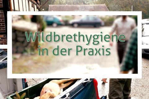 Wildbrethygiene in der Praxis (Quelle: DJV)