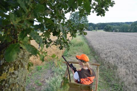 Der Deutsche Jagdverband empfiehlt Jägern, grundsätzlich nur von erhöhten Einrichtungen, etwa Hochsitzen, zu schießen.  (Quelle: Kaufmann/DJV)