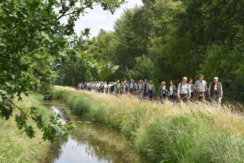 Im Rahmen des Bundesjägertages 2018 fand eine Exkursion ins Bremer Blockland statt. (Quelle: Kapuhs/DJV)