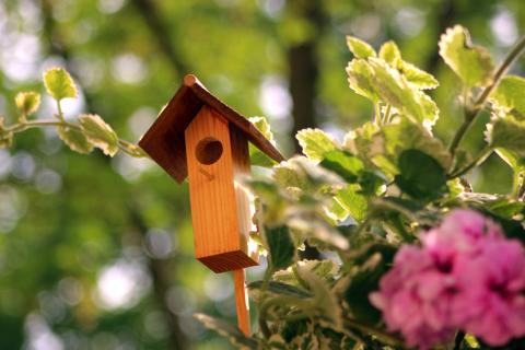 Insektenhäuschen Elfenhaus