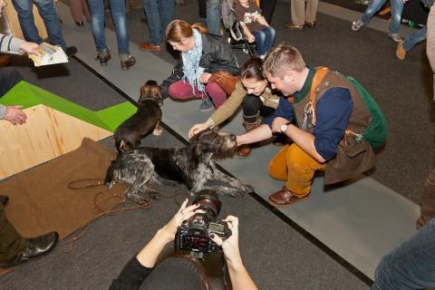 Mitarbeiter des Jagdgebrauchshundverbands (JGHV) und Hundetrainerinnen stellen Jagdhunde vor und geben Erziehungs-Tipps.