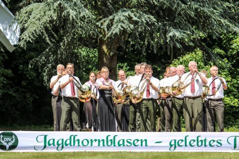 Zweitplatziert in der Klasse Es: Kreisjagdverein Gross Gerau aus Hessen beim Bundeswettbewerb Jagdhornblasen 2017 (Quelle: DJV)