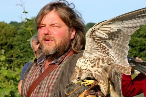 Hans-Peter Schaaf, Leiter des Jagd-Falkenhof im Wildgehege Moritzburg, präsentiert seine Greifvögel