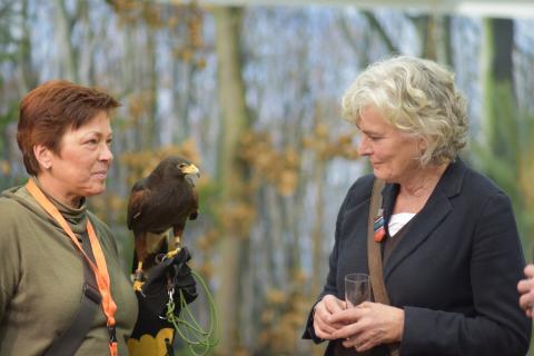 Petra Crone (Jagdpolitische Sprecherin der SPD-Bundestagsfraktion) Auge in Auge mit einem Harris Hawk.