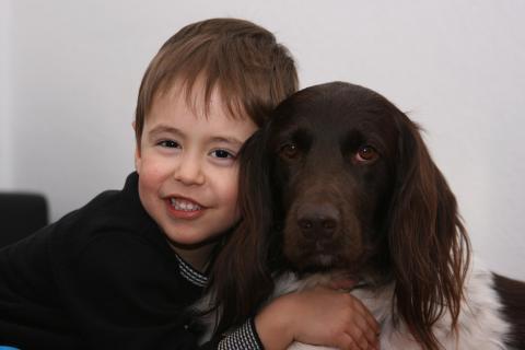 Kind mit Jagdhund (Quelle: Klein/DJV)
