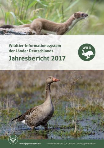 Wild Bericht 2017 Titelbild